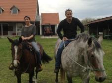Hungary Horses