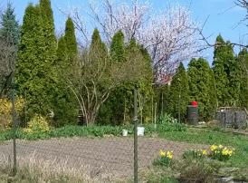 Tapolca garden